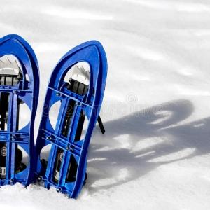 Raquetas Para Nieve
